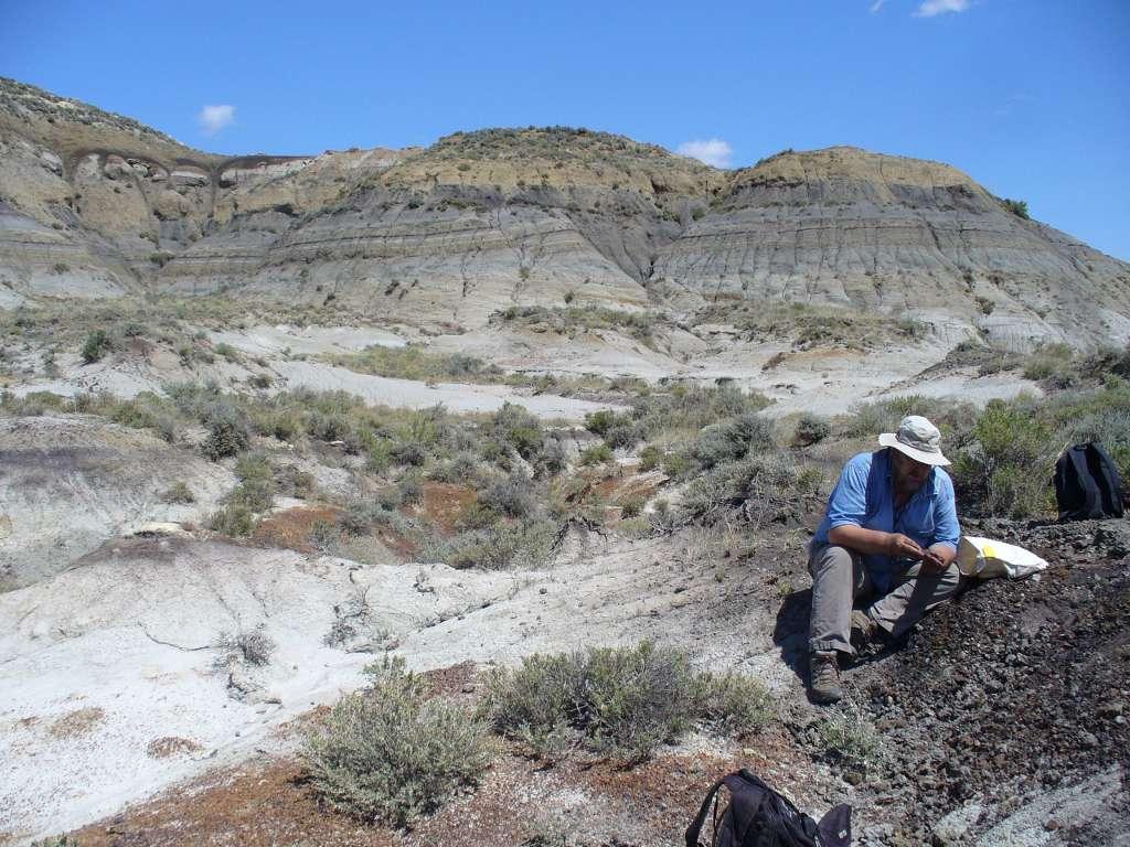 La crise du Crétacé-Tertiaire a été datée grâce à des cendres volcaniques prélevées dans une couche géologique renfermant les derniers fossiles de dinosaures. L'échantillonnage a été réalisé, ici par Paul Renne, au sein de la formation géologique de Hell Creek. © Courtney Sprain