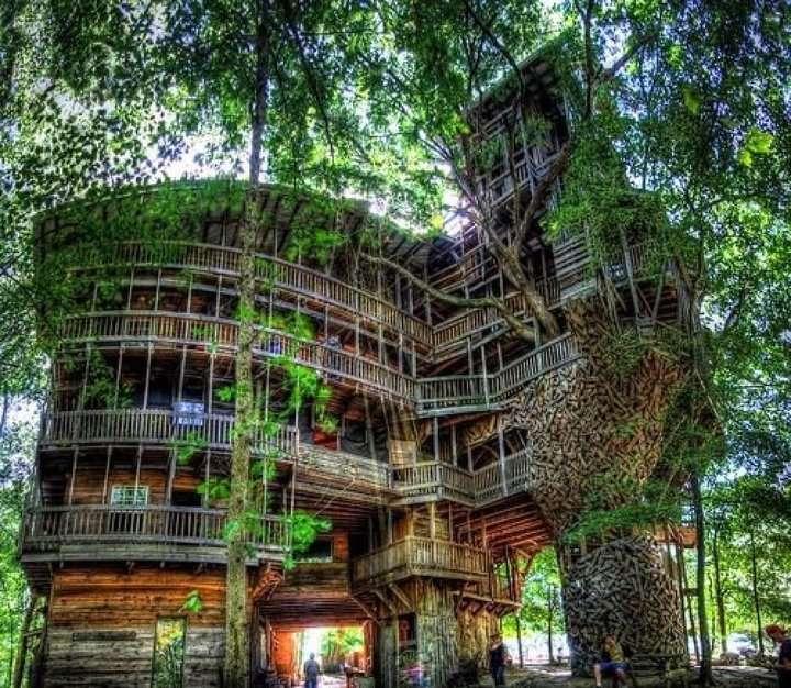 Une cabane dans les arbres... de 1000 m2 !