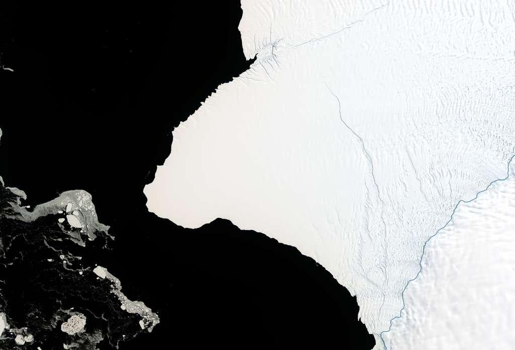 Un iceberg pourrait se détacher de la barrière de glace de Brunt en Antarctique comme une fissure est en train la découper, partant du sud vers le nord. © Nasa Earth Observatory image by Joshua Stevens using Landsat data from the U.S. Geological Survey