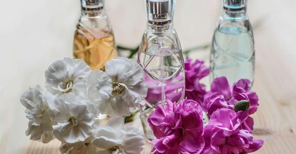 Le message des produits odorants, comme les parfums. © Monicore, Pixabay, DP