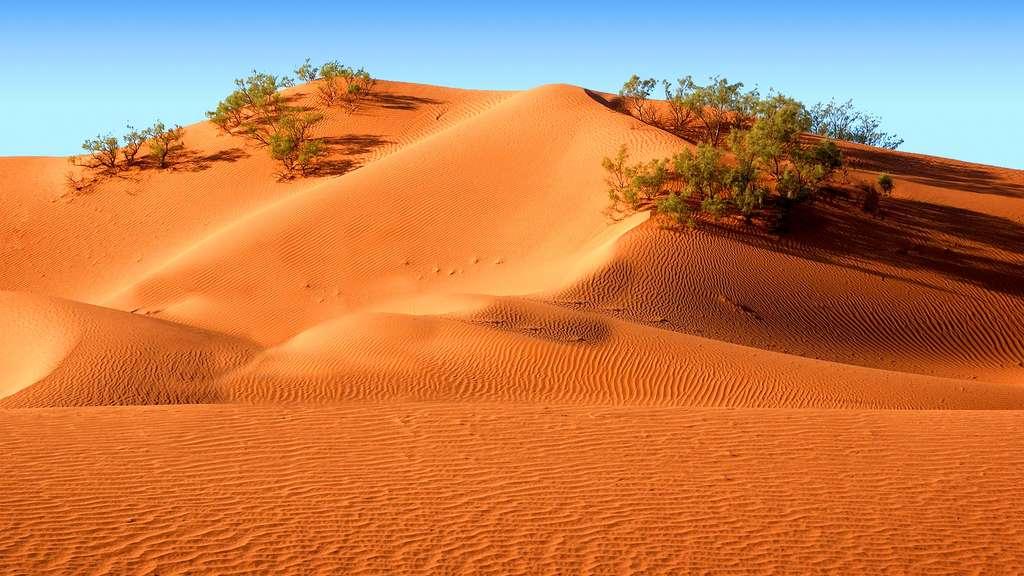 Maroc, les impressionnantes dunes orangées