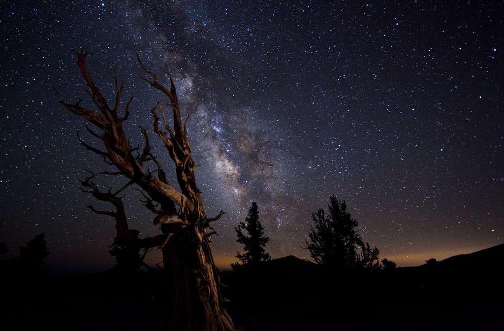 « La Terre dans l'espace » : c'est dans cette catégorie que cette magnifique image a remporté le concours 2010 de la plus belle photographie astronomique de l'année. © Tom Lowe