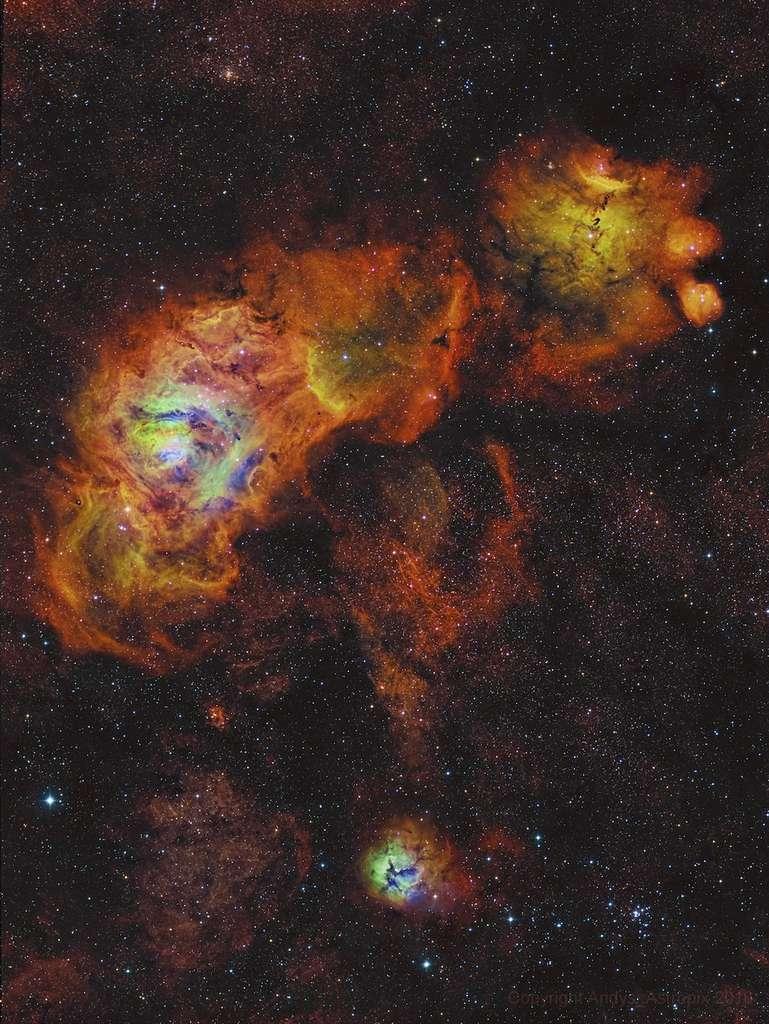Les fleurs du Sagittaire : en haut à gauche, la nébuleuse de la Lagune (M 8), à droite, NGC 6559, et en bas, la nébuleuse Trifide (M 20) en bas. © Andrew Campbell