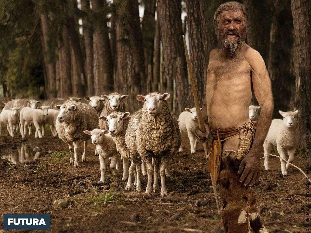 Ötzi, l'homme des glaces découvert en 1991 était un berger.