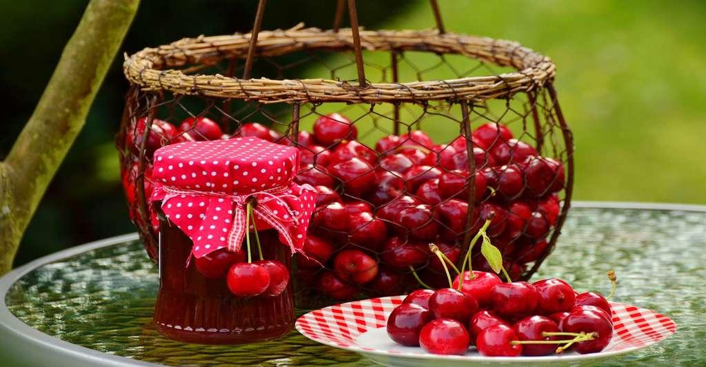 Les cerises fruits de l'été à consommer sans modération. © Condesign - Domaine public