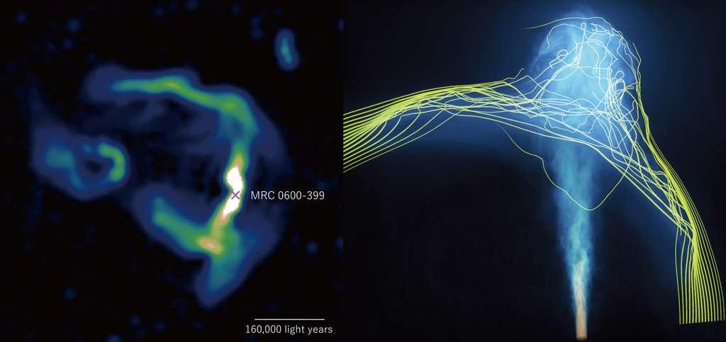 Sur ces images, les jets de plasma courbés émis par le trou noir supermassif au centre de la galaxie MRC 0600-399. À gauche, l'image obtenue par le radiotélescope MeerKAT (Afrique du Sud). À droite, celle obtenue par la simulation. © Chibueze, Sakemi, Ohmura et al. (Image MeerKAT) ; Takumi Ohmura, Mami Machida, Hirotaka Nakayama, 4D2U Project, Naoj (image Aterui II)