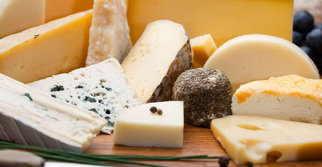 Quelles sont les étapes de la fabrication du fromage ? © Chlorophylle, Fotolia