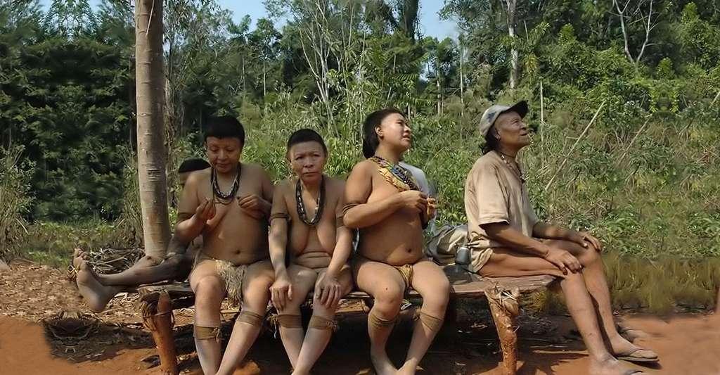 Les cinq derniers Akuntsus avant 2016. Lorsqu'ils mourront, leur tribu disparaîtra. © Fiona Watson, Survival