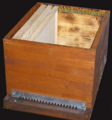 Corps de ruche. © Bernard Nomblot, DR