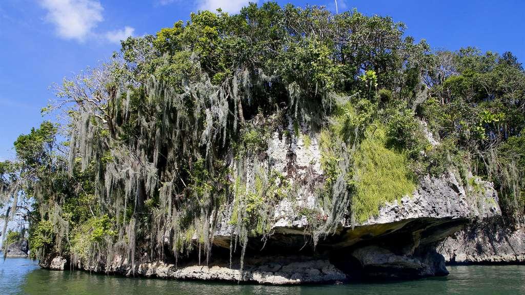 La formation karstique du parc naturel des Haïtises