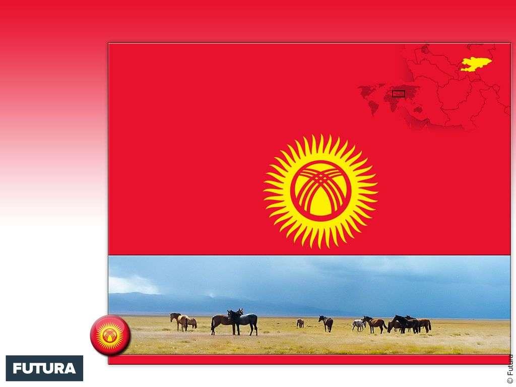 Drapeau : Kirghizistan