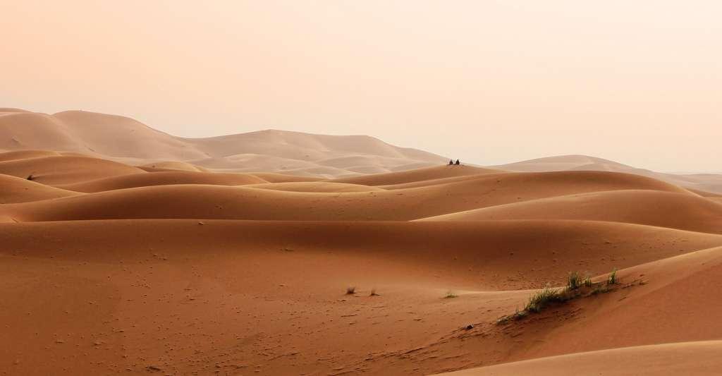 Il ne faut pas confondre sécheresse et aridité. L'aridité correspond à une faiblesse des précipitations moyennes associée à une forte évapotranspiration. © GregMontani, Pixabay License