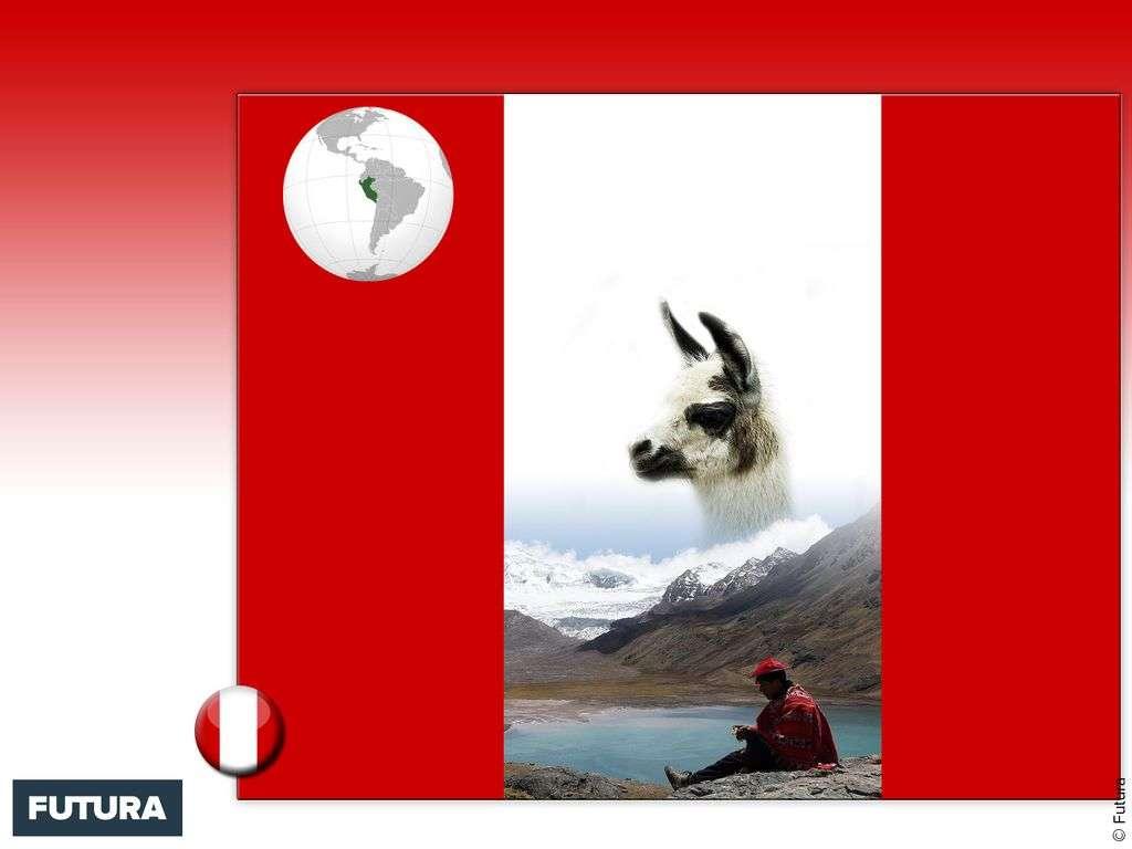 Drapeau : Pérou