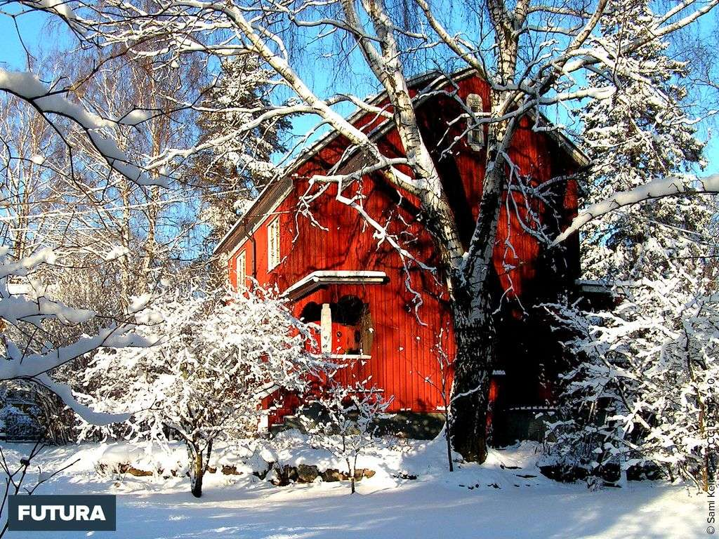 Chalet enneigé à Helsinki - Finlande