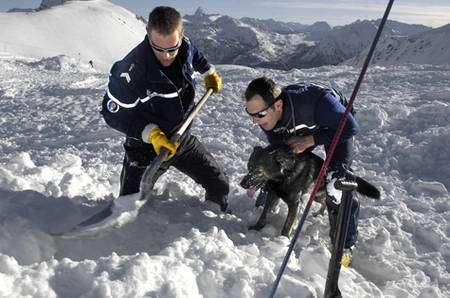 Entraînement d'un chien d'avalanche avec deux membres du Peloton de gendarmerie de haute montagne. © Sirpa gendarmerie