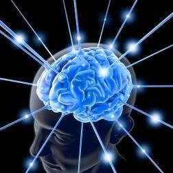 L'épilepsie se déclenche suite à une agression du cerveau. © pratis.com