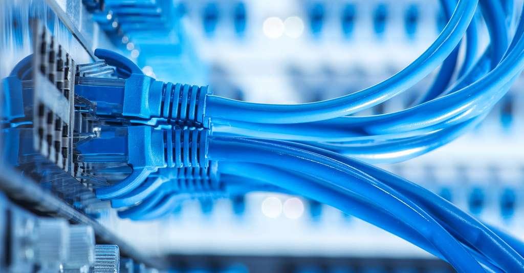 Cables de connection. © Asharkyu, Shutterstock