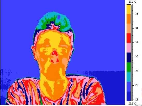 Le nez, qui par sa situation est plus frais que le reste du corps, voit sa température augmenter lorsqu'un mensonge est lancé. © université de Grenade