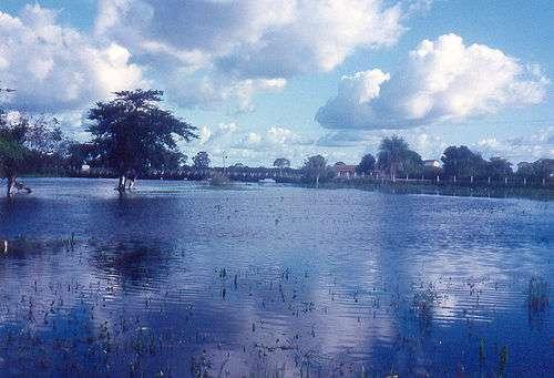 Le Pantanal est l'une des régions amazoniennes touchées par des crues annuelles. © Claudyo Casares, Wikimedia, domaine public