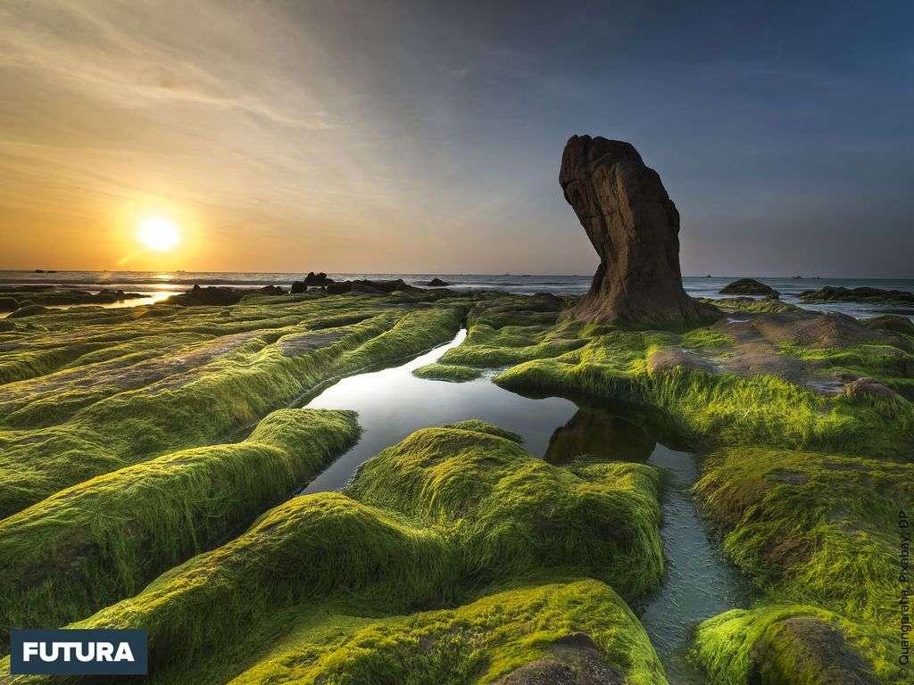Plage rocheuse des 7 couleurs de Co Thach, Vietnam