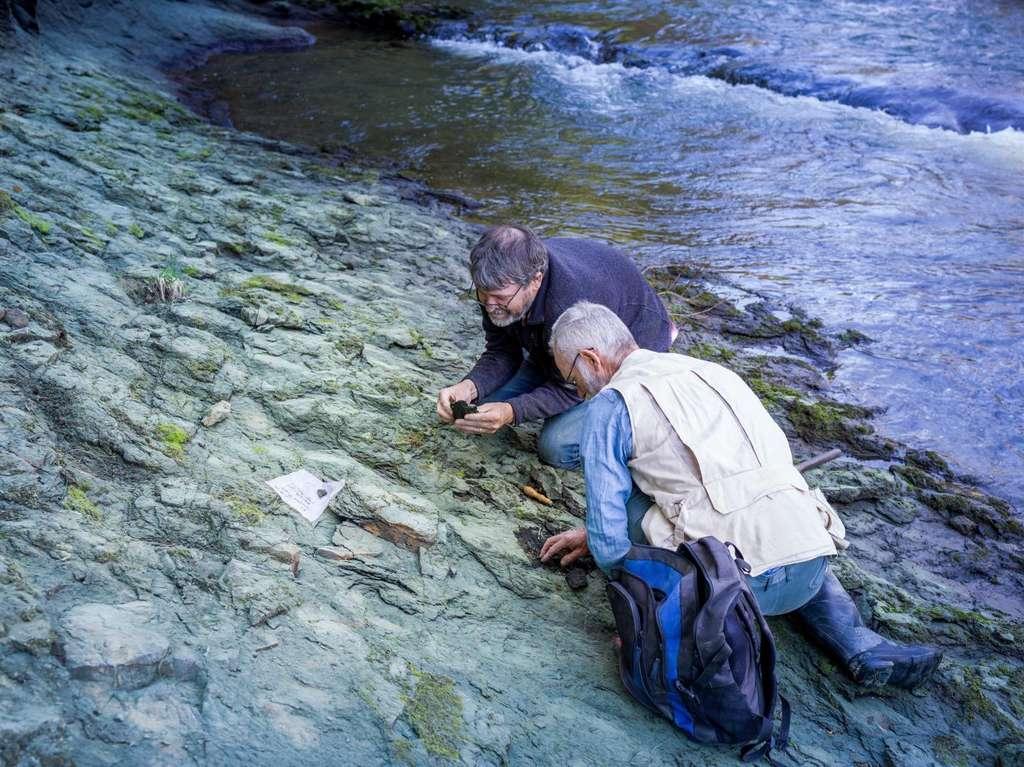 Le Dr Paul Scofield et le paléontologue amateur Leigh Love examinent une berge de la rivière Waipara, non loin du lieu où a été découvert Protodontopteryx ruthae. © Musée de Canterbbury