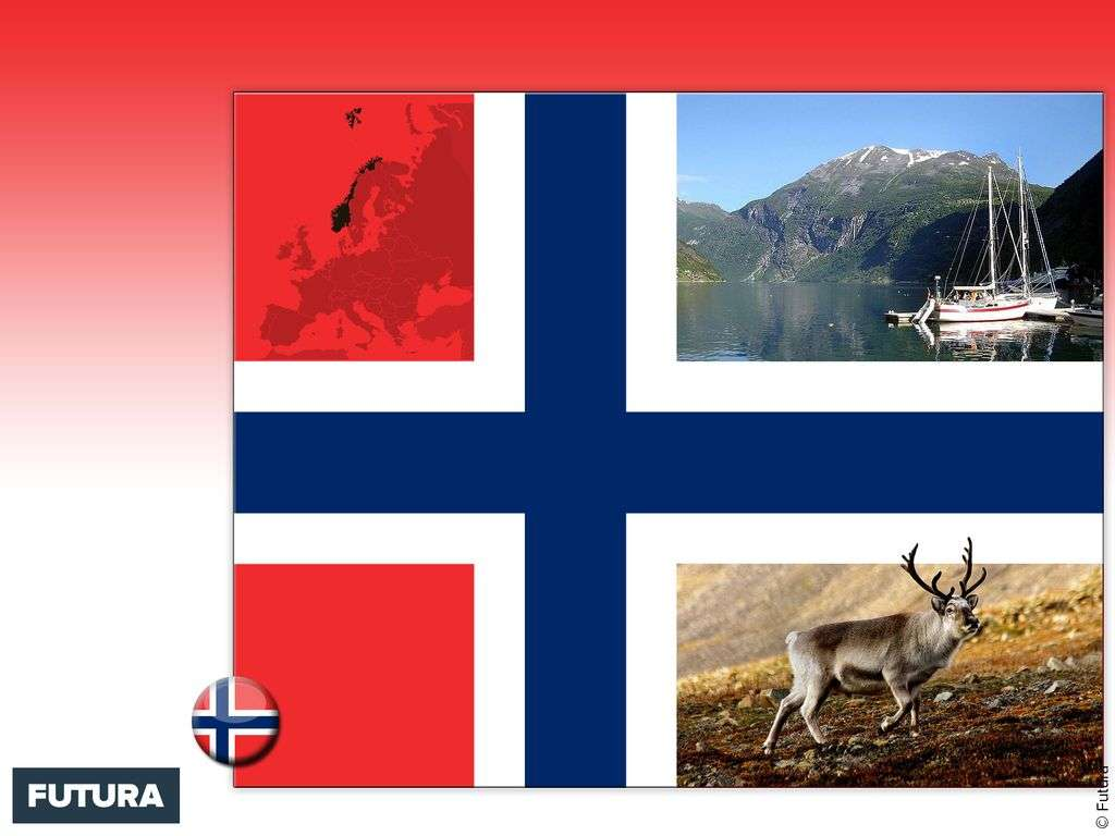 Drapeau : Norvège