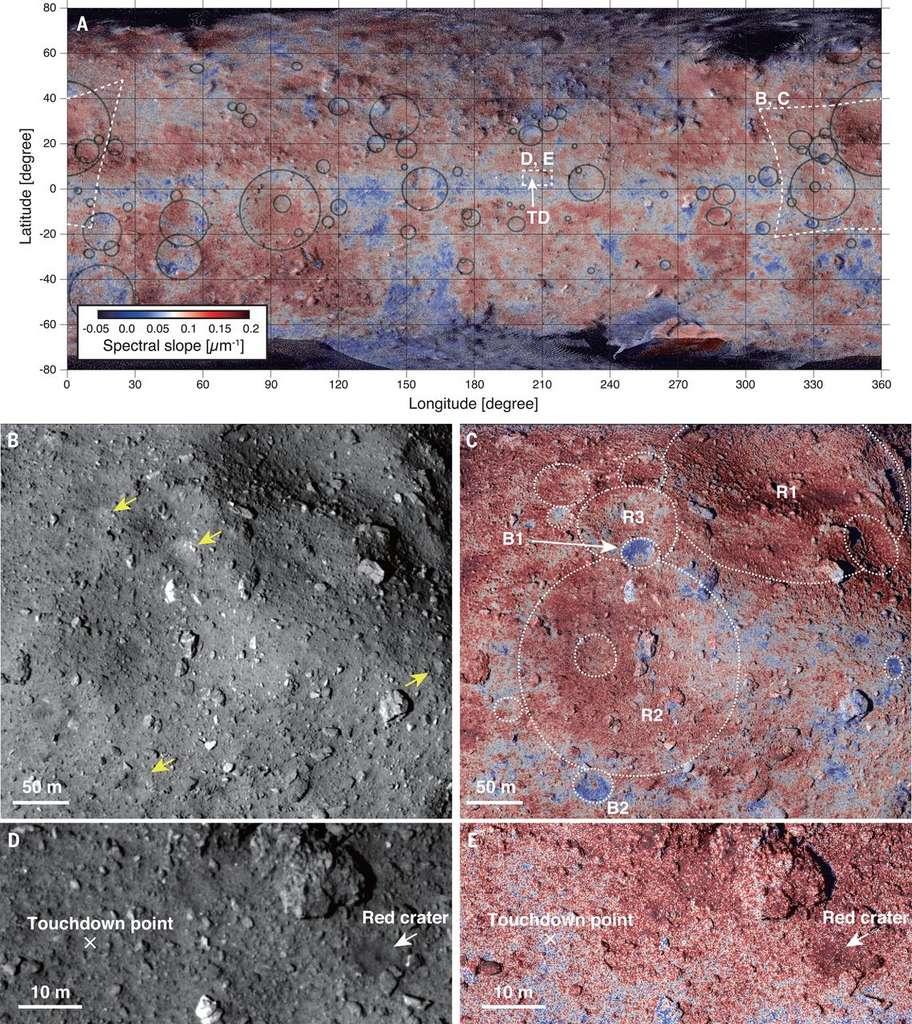 Cartes de Ryugu. L'image A est une carte globale de l'astéroïde superposant image en lumière visible et pente spectrale. La pente spectrale (représentée par le dégradé rouge-bleu) indique les zones légèrement plus rouges ou plus bleues. Les images B et D sont en lumière visible. Les images C et E montrent la pente spectrale des mêmes zones. © Morota et al. 2020