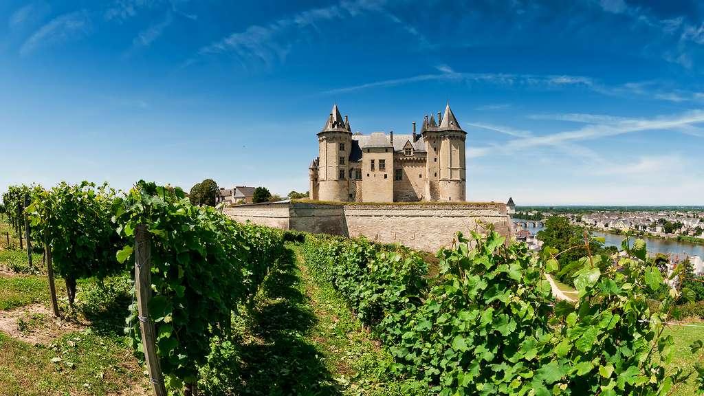 Le château de Saumur, bien cadré