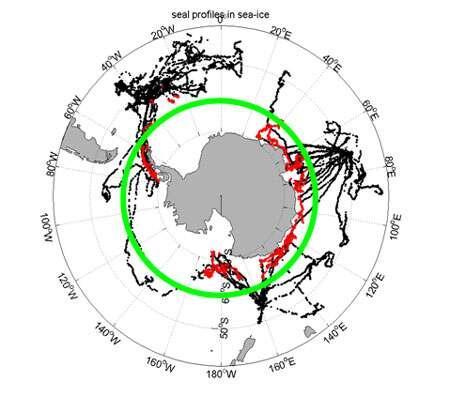 2004-2007 : 25.000 profils T/S obtenus en temps réel, 90 % des profils Coriolis disponibles (ligne verte) au sud de 60 °S 98 % des profils Coriolis obtenus dans la banquise (point rouges). © DR