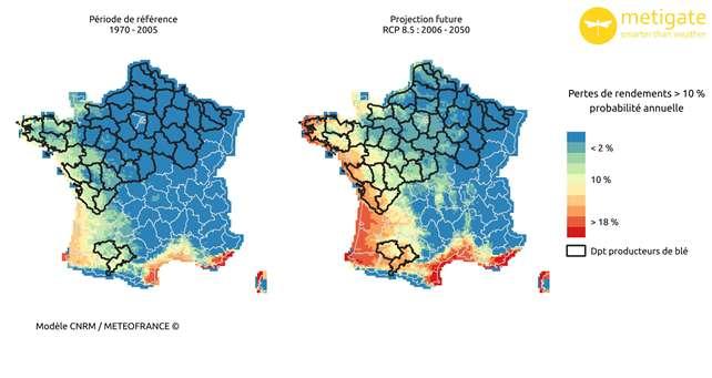 Pertes probables de rendement de blé en France entre 2005 et 2050. © Météo France, tous droits réservés