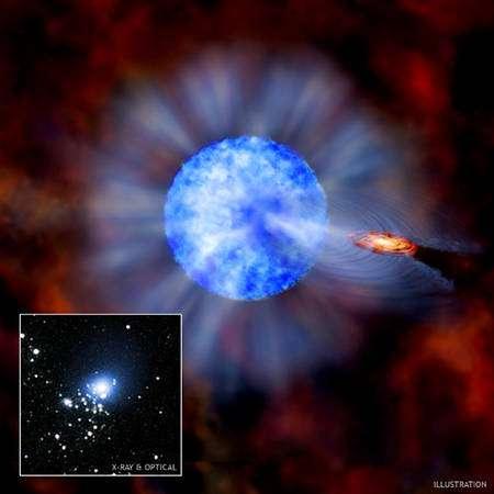 Image d'artiste du trou noir entouré de son disque d'accrétion et arrachant du gaz à sa compagne, une étoile bleu chaude. En bas à gauche, une image composite en optique prise par Hubble et en X par Chandra. Cliquez pour agrandir(Crédit : Nasa/CXC/M.Weiss; X-ray: Nasa/CXC/CfA/P.Plucinsky et al.; Optical: Nasa/STScI/SDSU/J.Orosz et al.).