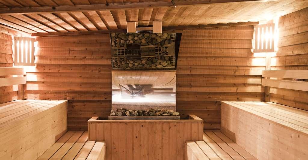 Le sauna peut être intérieur ou extérieur. © Peter Dedeurwaerder, Shutterstock