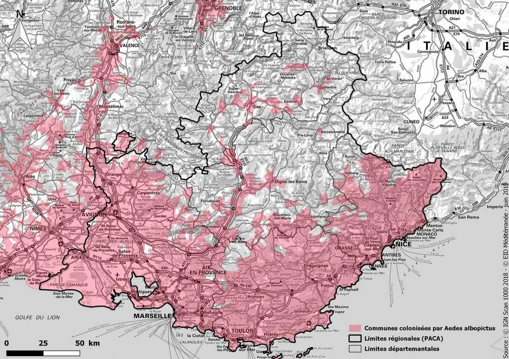 Carte de la colonisation par Aedes albopictus en Provence-Alpes-Côte d'Azur. Mais d'autres maladies liées aux moustiques apparaissent aujourd'hui. Ainsi, le virus du Nil (West-Nile) qui est transmis par cet autre type de moustique, le Culex pipiens. © Le Grec, EID Méditerranée, 2019