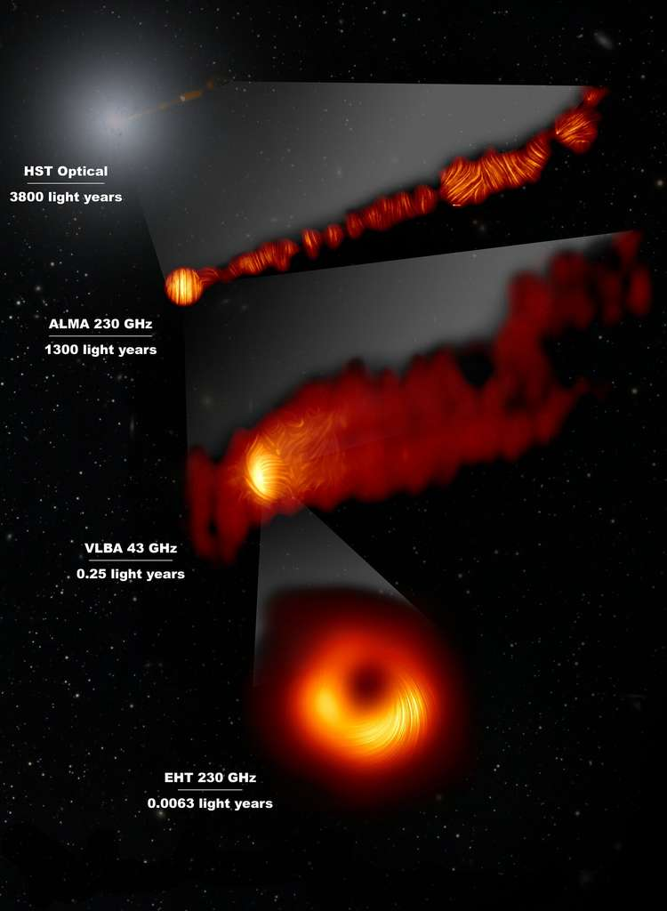 Sur cette image composite figurent trois vues des régions centrales de la galaxie Messier 87 (M87) en lumière polarisée et une vue, dans le domaine visible, acquise par le télescope spatial Hubble. La galaxie, qui héberge un trou noir en son centre, est célèbre pour ses jets qui s'étendent bien au-delà de la galaxie. Les lignes indiquent l'orientation de la polarisation, étroitement liée au champ magnétique qui règne au sein des régions imagées. La combinaison des informations capturées par l'EHT et Alma permet aux astronomes d'étudier le rôle des champs magnétiques depuis les environs de l'horizon du trou noir (sondé par l'EHT à l'échelle d'un jour-lumière) jusqu'à l'extrémité des puissants jets émis par la galaxie (sondé par Alma à l'échelle de milliers d'années-lumière). Les valeurs obtenues – exprimées en GHz – se réfèrent aux fréquences de la lumière auxquelles les différentes observations ont été effectuées. Les lignes horizontales figurent l'échelle (en années-lumière) de chaque image prise individuellement. © EHT Collaboration; Alma (ESO/NAOJ/NRAO), Goddi et al.; Nasa, ESA and the Hubble Heritage Team (STScI/AURA); VLBA (NRAO), Kravchenko et al.; J. C. Algaba, I. Martí-Vidal