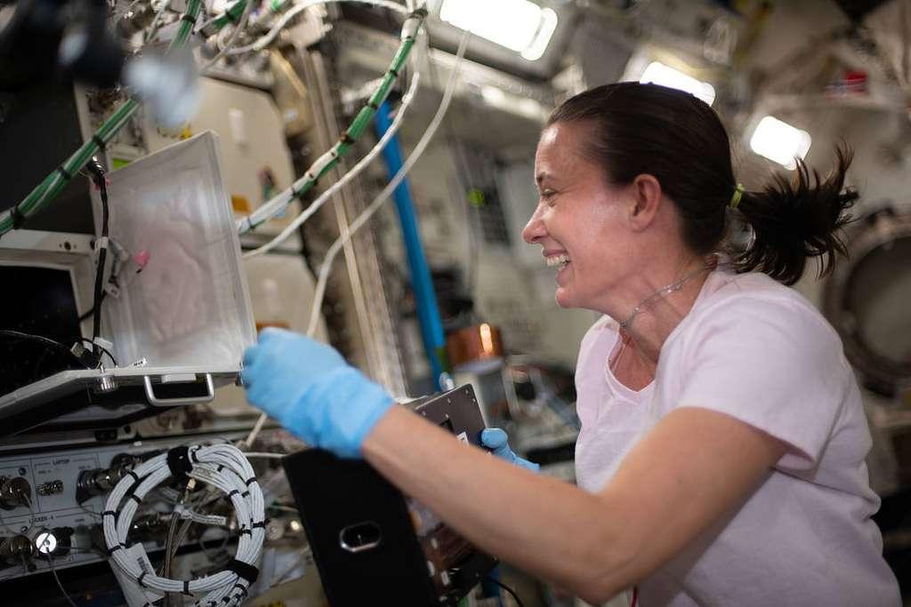 L'astronaute Megan McArthur travaille sur le projet de recherche Kidney Cells-02. © Nasa