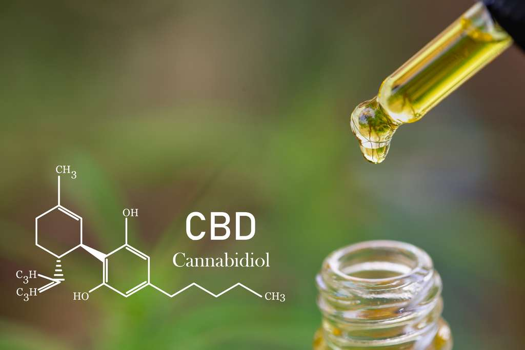 Le CBD est une molécule faisant partie de la famille des cannabinoïdes. Il posséderait des vertus thérapeutiques et n'entraîne pas de dépendance à l'inverse du THC. © Tinnakorn, Adobe Stock