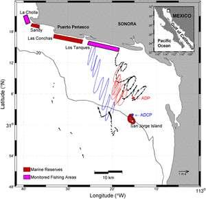 Cliquer pour agrandir. Localisation des réserves marines, des zones suivies et des courants locaux du Golfe de Californie. © Richard Cudney-Bueno et al.