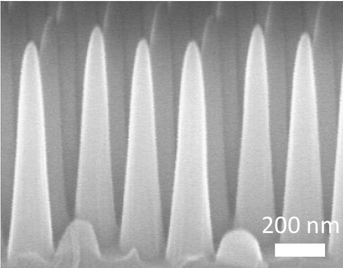 Vue microscopique de la surface nanotexturée élaborée par des chercheurs du MIT. Ces cônes sont obtenus par un procédé de gravure issu des techniques employées dans l'industrie des semi-conducteurs. © Massachusetts Institute of Technology