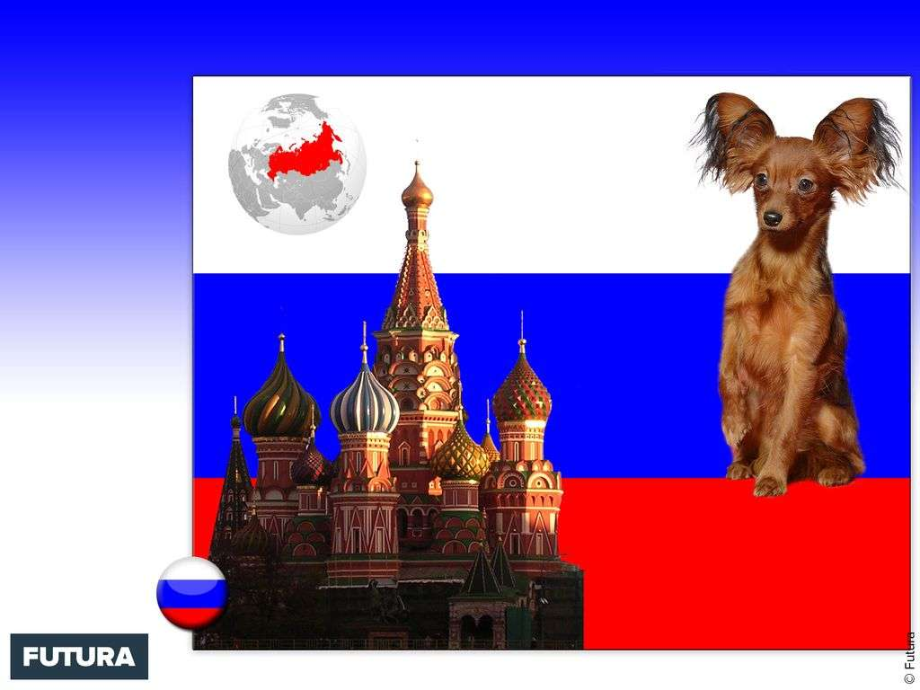 Drapeau : Russie