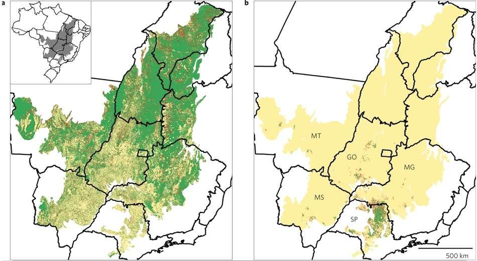Le Cerrado brésilien (zone colorée) s'étend sur 2 millions de kilomètres carrés mais perd peu à peu son côté sauvage. a) Situation en 2008 : le vert correspond aux régions préservées et les points rouges aux zones défrichées après 2002. b) Le vert correspond aux champs de canne à sucre en 2005/2006 et les points rouges aux nouveaux champs de canne en 2008/2009. © Nature Climate Change