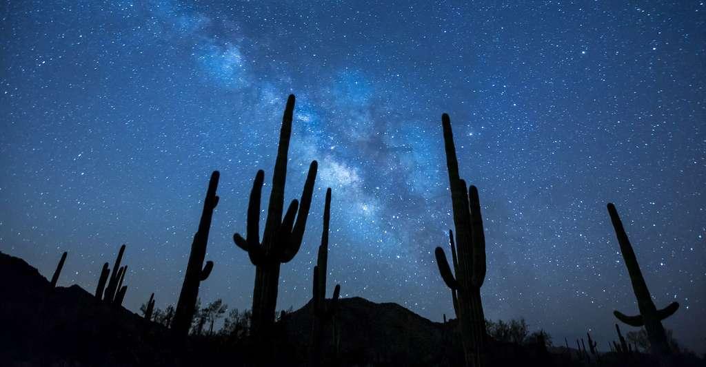 Vue de la voie lactée. © skeeze CCO