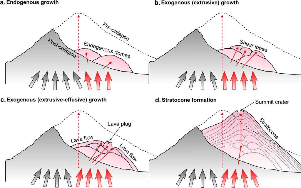 Les phases de reconstruction du volcan. Durant la période 1956-1967, deux dômes de lave apparaissent sur le flanc gauche effondré (figure a). Ils se rapprochent progressivement (1967-1976, figure b) pour ne former plus qu'une cheminée unique (figure c, 1977-2006). Le stratocône a aujourd'hui pratiquement retrouvé sa taille d'origine (figure d). © Alina V. Shevchenko et al, Communications Earth & Environment, 2020