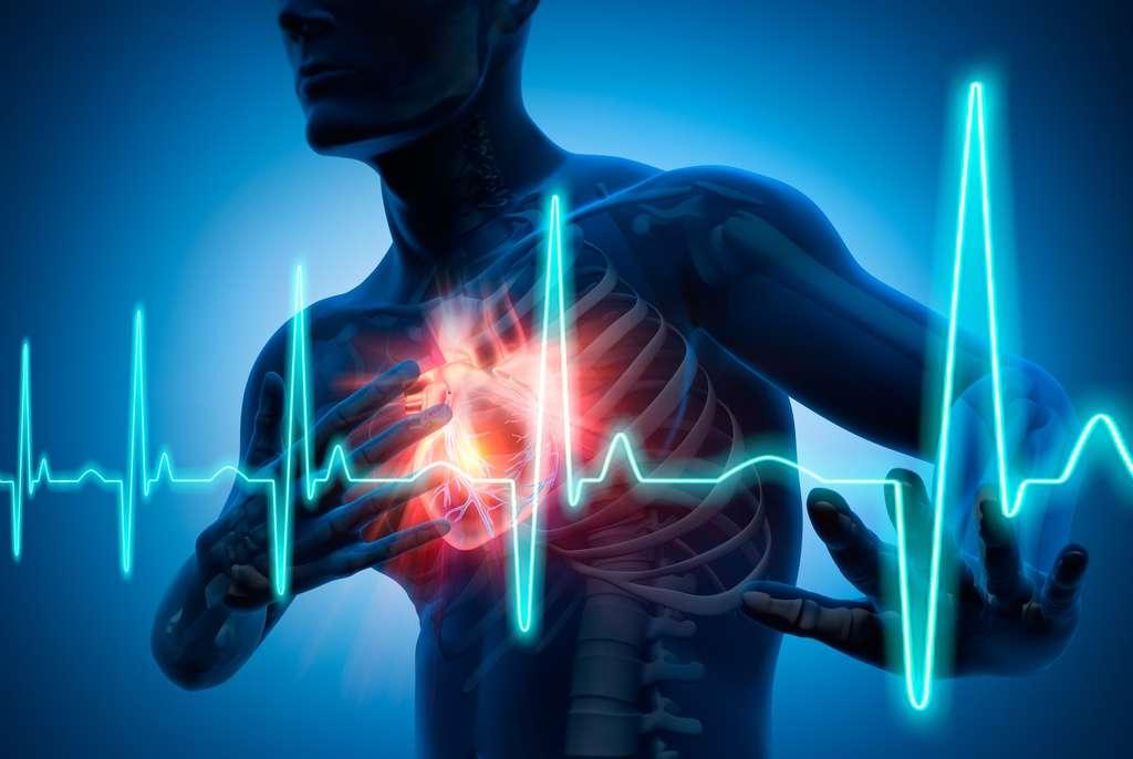Les piments pourraient aider à réduire le risque cardiovasculaire. © psdesign1, Fotolia