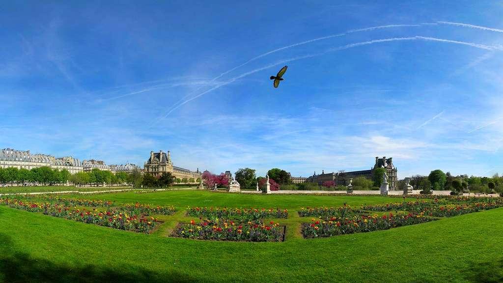 Le jardin des Tuileries, près du Carrousel du Louvre