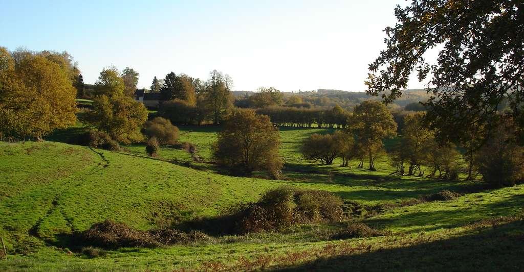 Pourquoi ne pas faire du tourisme dans la Creuse ? Ici, un paysage de l'ouest creusois. © Lemosin, Wikipédia, DP