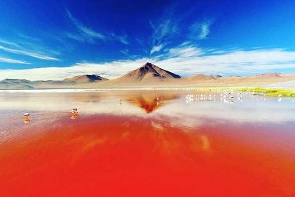 Le lac Colorada dans lequel semble couler le sang. © fisicawildson, Instagram