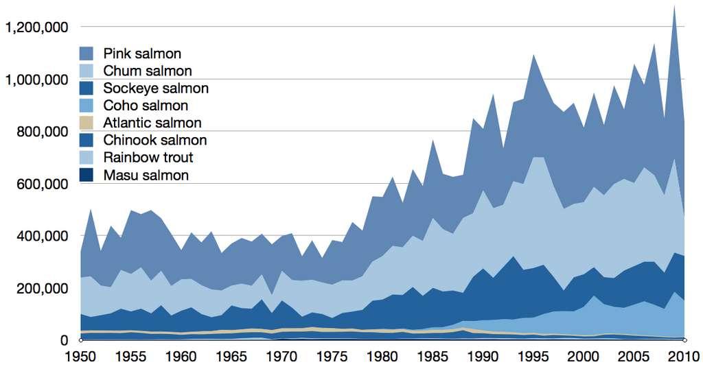 Capture commerciale de toutes les espèces de saumons sauvages entre 1950 et 2010. © Epipelagic, Wikimedia commons, CC by-sa 3.0