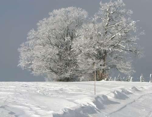 Pour évaluer le prochain réchauffement, il faut étudier les différentes rétroactions. © Yves Fouquart