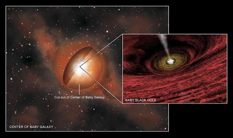 Le trou noir massif rayonne dans les domaines optique et ultraviolet mais son cocon de gaz et poussières ne laisse passer que des rayons X. L'artiste a aussi représenté sur la droite le disque d'accrétion du trou noir ainsi que ses jets de matière. © Nasa/CXC/M.Weiss