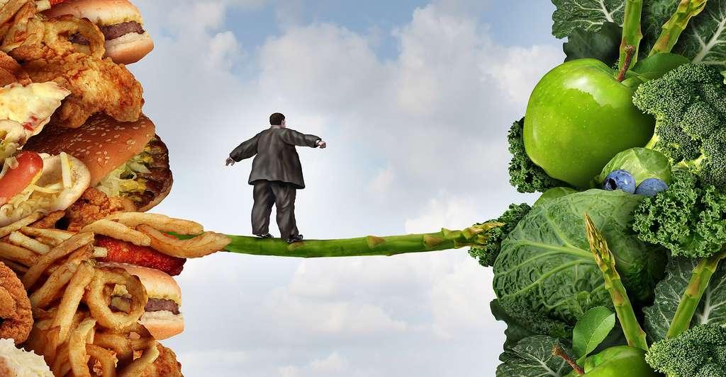 Lutter contre l'obésité dans le monde passe par un changement des habitudes alimentaires. © Lightspring, Shutterstock